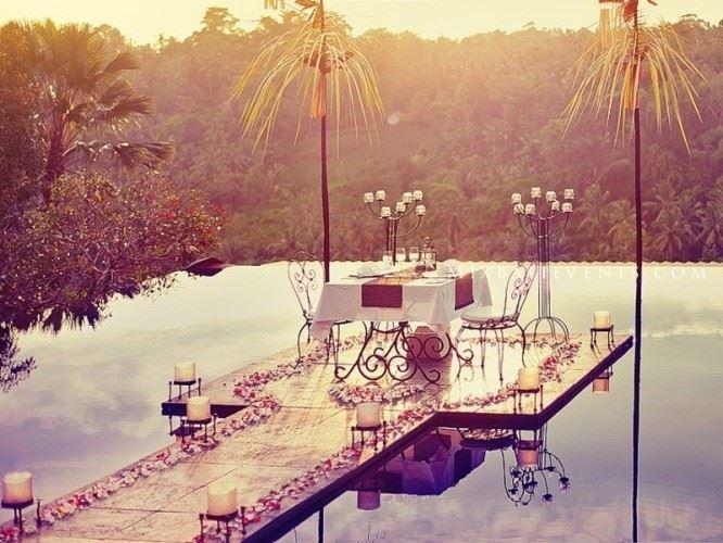 Романтический ужин в джунглях <br>